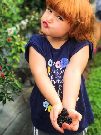 Violetblackberries
